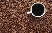 קפה הוא אחד המשקאות הכי פופולאריים ונפוצים בעולם, בעיקר בעולם המערבי והמפותח אך בהיקפים הולכים וגדלים גם במדינות המתפתחות. למעשה, שוק הקפה הינו שני בגודלו בכלל שוק הסחורות רק לשוק […]